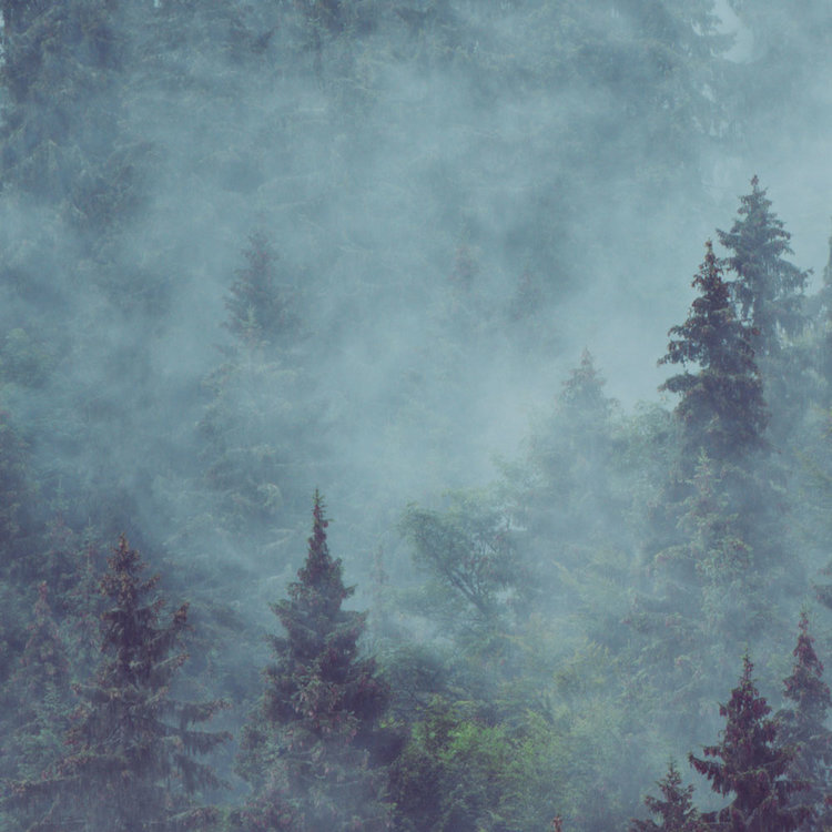 Behang Misty Mountains 1
