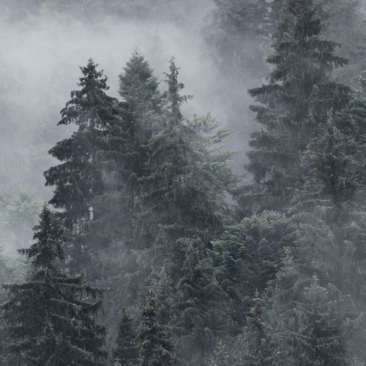 Behang Misty Mountains 2