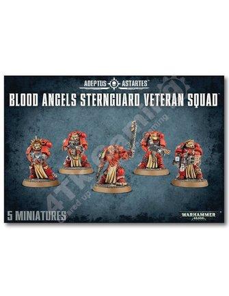 Warhammer 40000 #Blood Angels Sternguard Veteran Squad