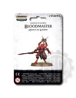 ~ Bloodmaster Herald Of Khorne