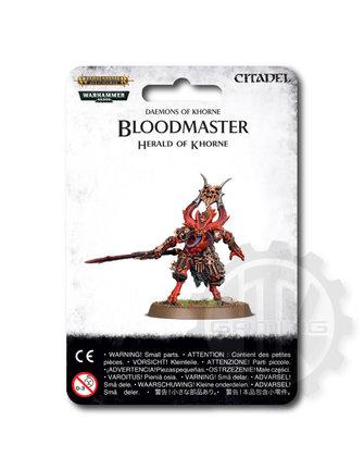 Age Of Sigmar ~ Bloodmaster Herald Of Khorne