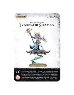 ~ Tzeentch Arcanites Tzaangor Shaman