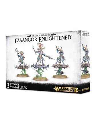 Age Of Sigmar Tzeentch Arcanites Tzaangor Enlightened