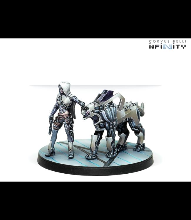 Infinity Andromeda, Sophistes of the Steel Phalanx (Submachine gun)
