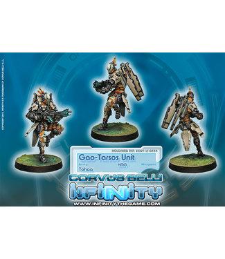 Infinity Gao-Tarsos Unit (HMG)