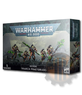 Games Workshop Necron Lychguard/Triarch Praetorians