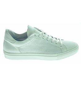 Gioirgio Giorgio sneaker (40 t/m 45) 181GIO13