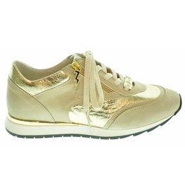 DL Sport DL Sport Sneaker ( 36 t/m 42 ) 181DLS04