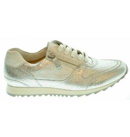 Hassia Hassia Sneaker (37 t/m 40) 191HAS10