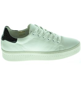 Shoecolate Shoecolate Sneaker ( 36 t/m 42 ) 211MON01