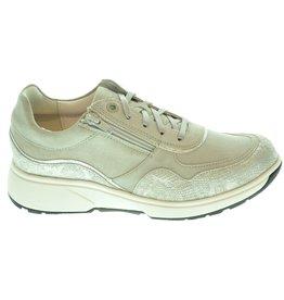 Xsensible Xsensible Sneaker ( 36 t/m 42 ) 211XEN02