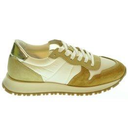 Poelman Poelman Sneaker ( 37 t/m 42 ) 211POE03