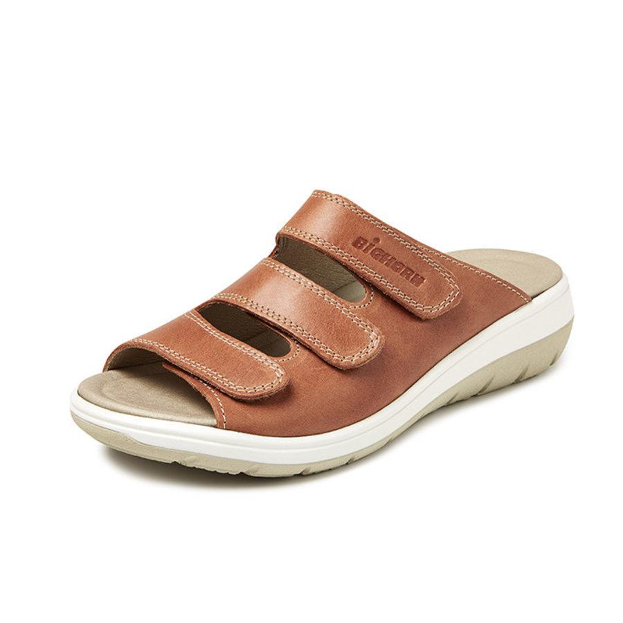 Bighorn - 4201 slipper bruin