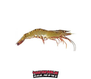 Vuur&Rook Box Wild Giant Gambas / Sea Tigers 1kg approximately 10 pieces
