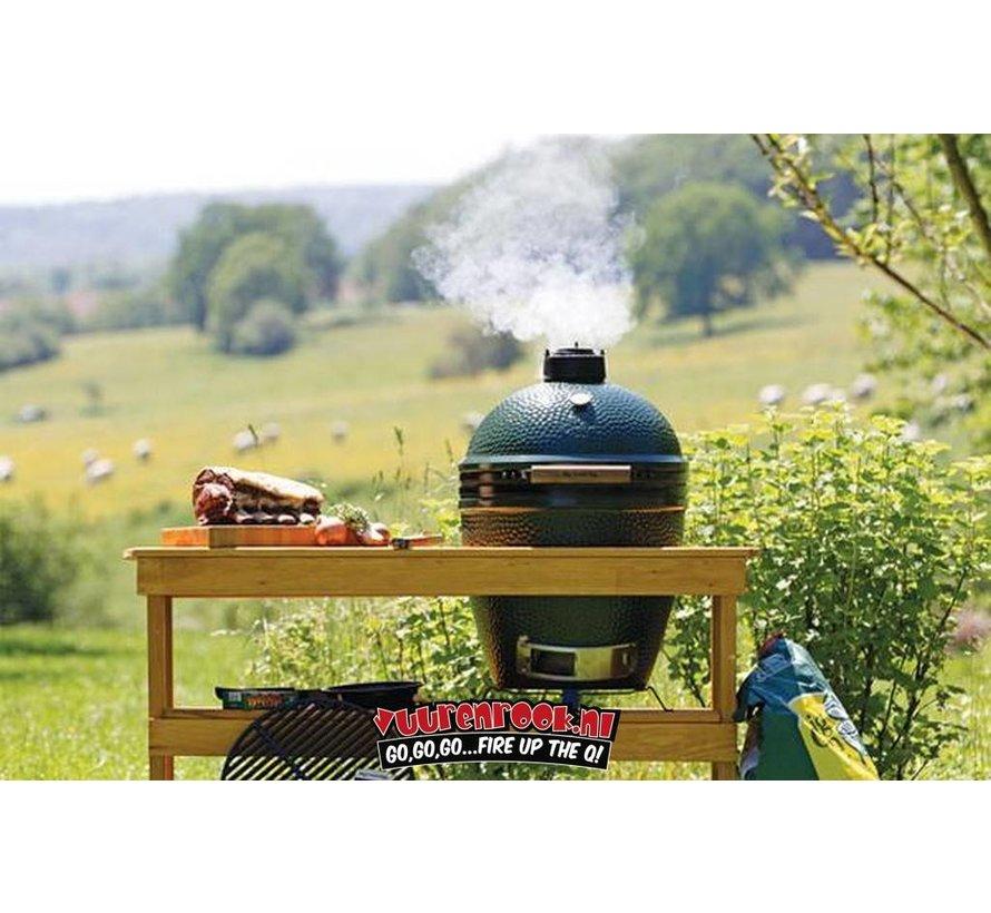 Big Green Egg Firebox MiniMax