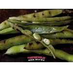 Grilled broad beans with dill-garlic salt