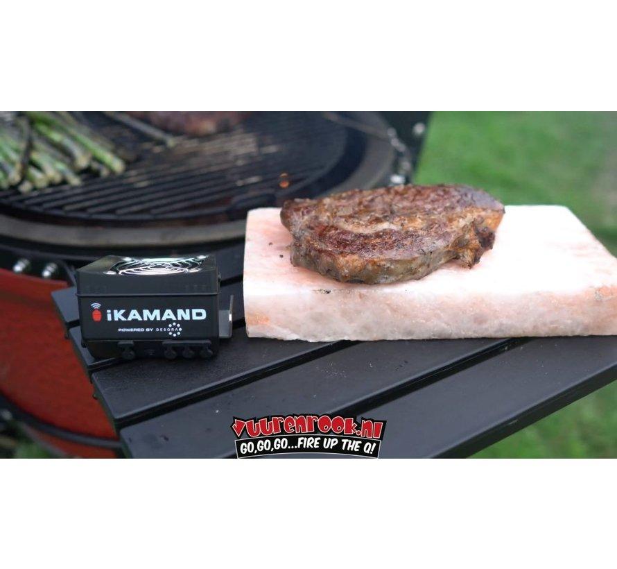 iKamand BBQ Controller Big Joe (2nd Generation)