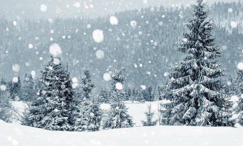 White Christmas JOY, LOVE and HAPINESS!