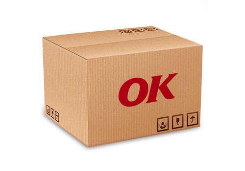 OK Ruitontdooier Spray, 12 x 500 ml