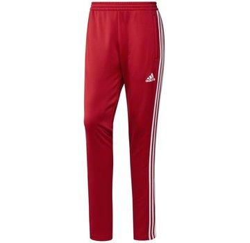 Adidas T16 Sweat Pant Herren Rot