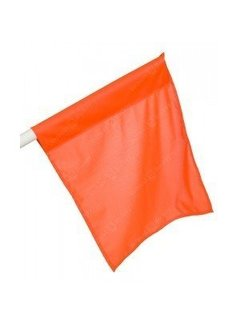Grosse Flagge Orange