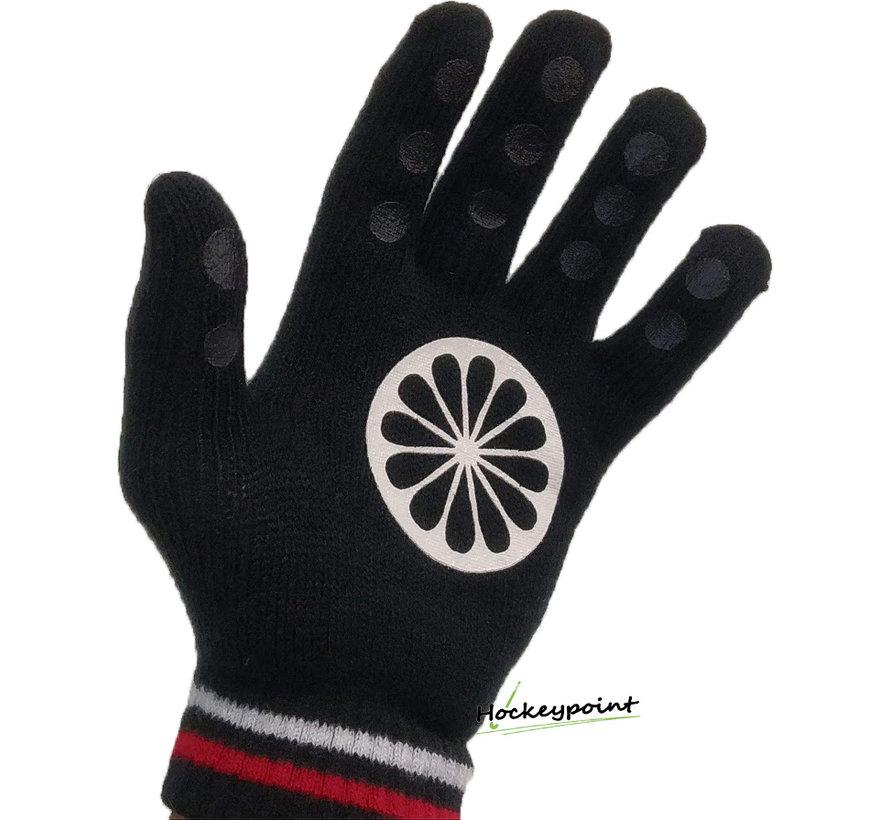 Winterhandschoen  [paar]