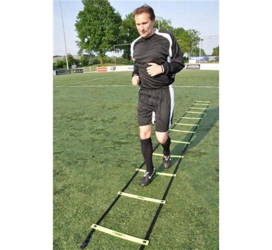 Training ladder Basic Adjustable