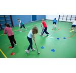 Schul- / Clubhockeyschläger