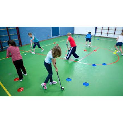 School / Club hockey sticks