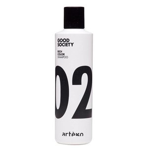Artègo Good Society Rich Color Shampoo 02