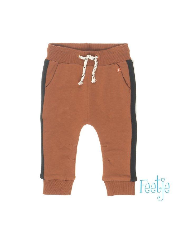 PANTS 522.01343 | bruin