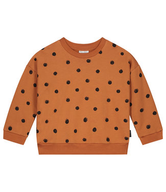 DAILY BRAT Painted polka sweater - Colombia brown