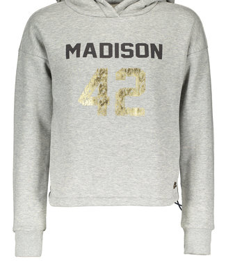 STREET CALLED MADISON Hooded sweater YES YES  - light grey