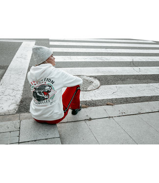 Colourful Rebel Revolution Hoodie offwhite 10036