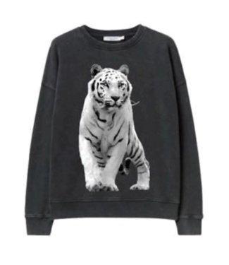 KIDS ONLY KONLUCINDA Sweat 15229402 - black tiger