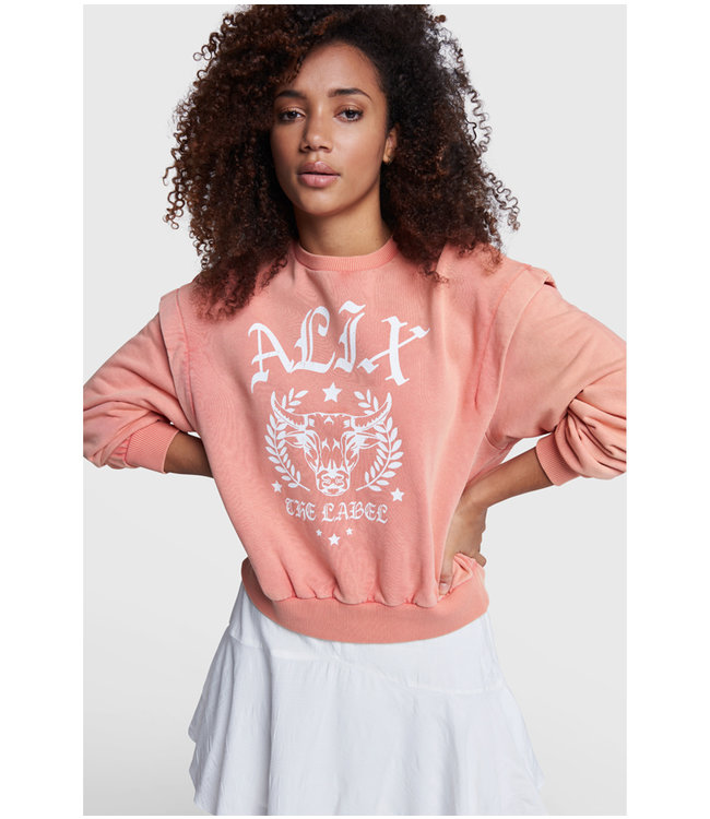 Alix university sweater - light salmon