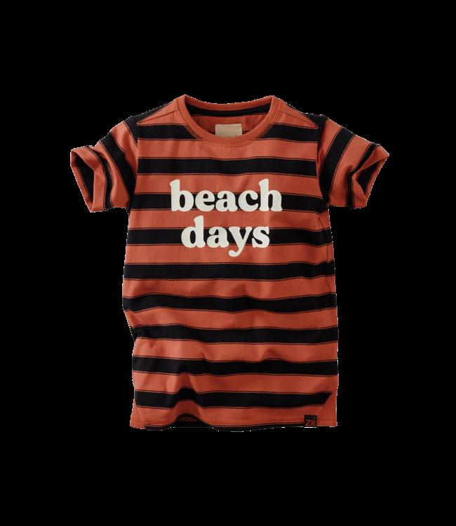 Alec T-shirt - Bombay brown/Beasty black