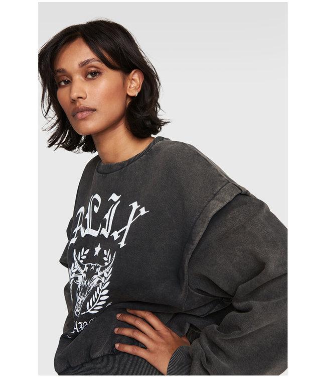 Alix university sweater - charcoal