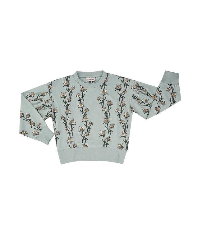Edelweiss - girl sweater EDE048