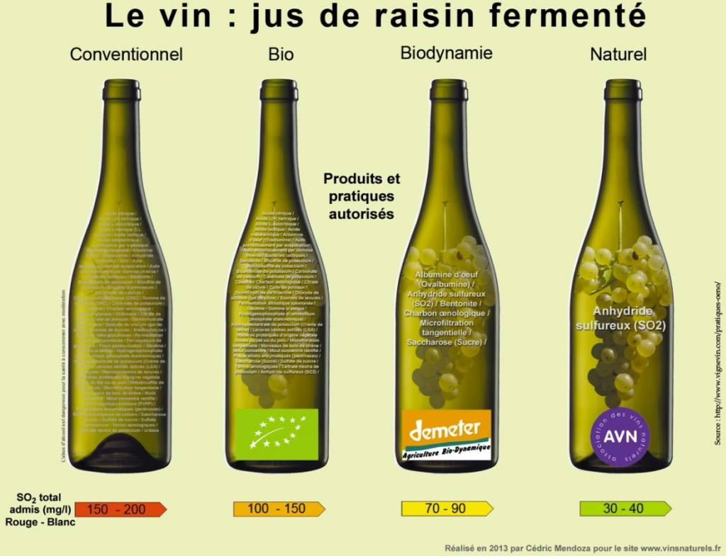 Organic Wine,  Natural Wine,  Bio Dynamic, Bio Wines all the same or not? ...NOT!