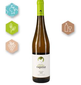 Quinta Cova Raposa  | Portugal | Vinho Verde Avesso 2019 | Quinta Cova Raposa Vinho Verde | Vinho Verde DOC