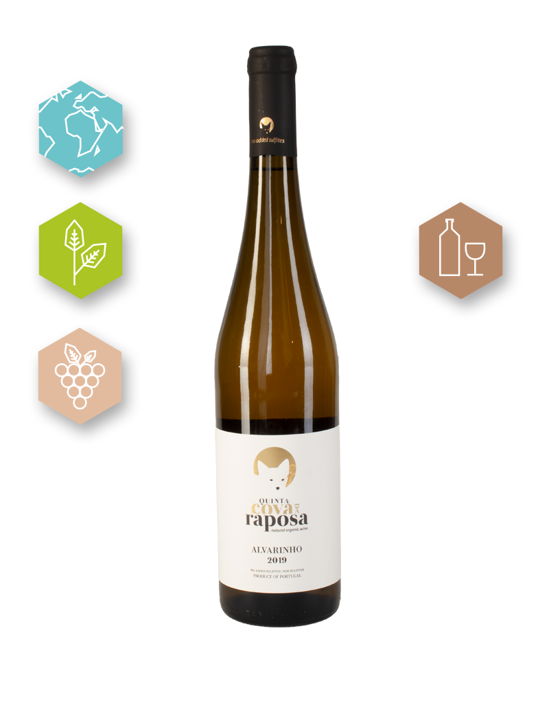 Quinta Cova Raposa  | Portugal | Vinho Verde Alvarinho 2019 | Quinta Cova Raposa Branco | Vino Regional MINHO