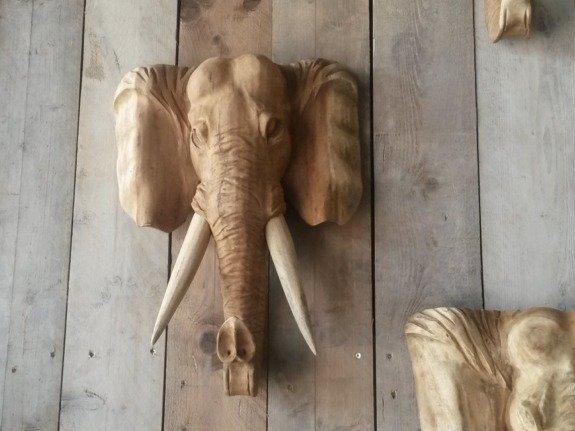 Olifantenkop hout M