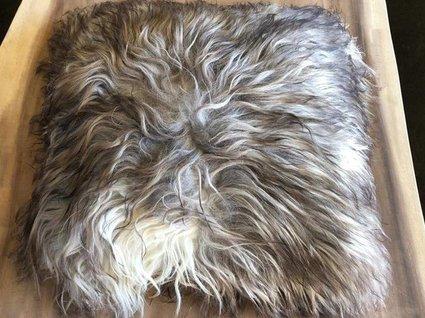 Huiden - Kussen IJslands schaap 40x40cm