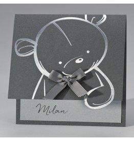 Buromac Pirouette Geboortekaart schattige teddybeer op staal
