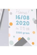 Familycards Klein Wonder Geboortekaartje Hippe vlaggetjes (63736)