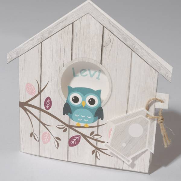 Familycards Klein Wonder Geboortekaartje vogelhuisje met uiltje (63055)
