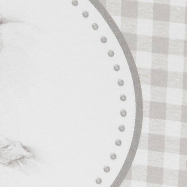 Familycards Klein Wonder Geboortekaartje Zusje geeft baby een kus (63766)