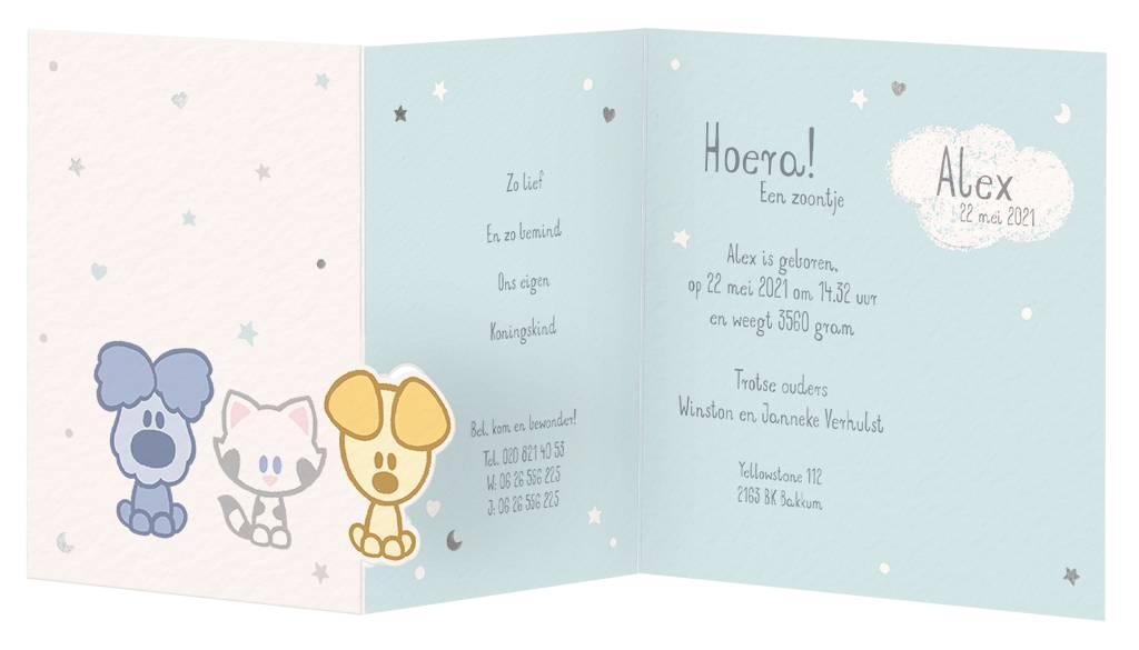 Belarto Hello World Woezel&Pip en Sterren en hartjes - Mint (7180578)
