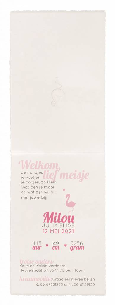 Belarto Hello World Geboortekaartje - Roze flamingo (718032)